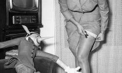 Sophia Loren stocking