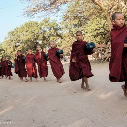 Young monks on one row