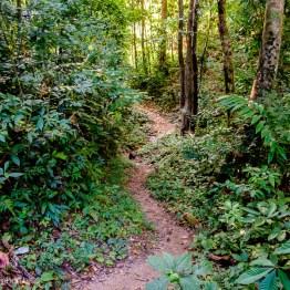 myanmar-hsipaw-trekking-3269