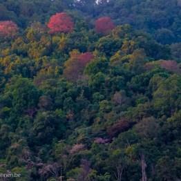 myanmar-hsipaw-trekking-3333