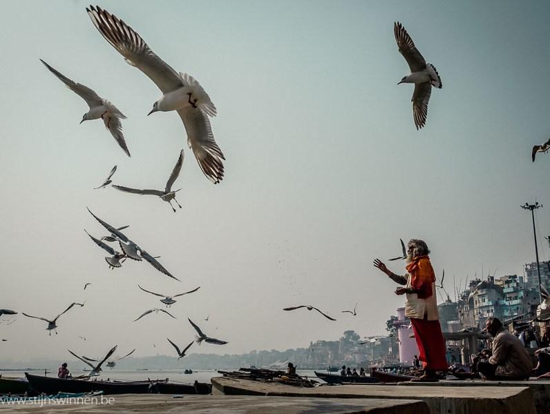 Sadhu feeding bird near Ganges river