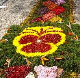 Festa da Flor na Madeira em Destaque no Entremares