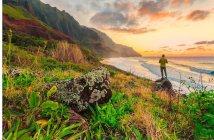 Surf no Hawai