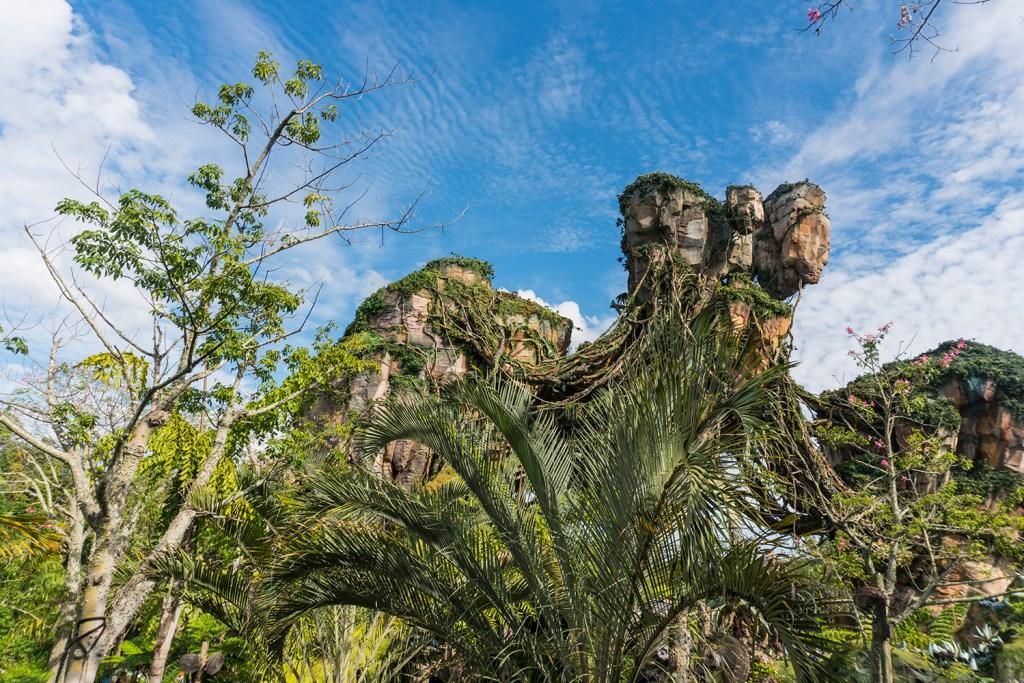 Melhores parques de Orlando: Animal Kingdom