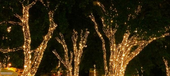 As melhores atrações de Natal em BH