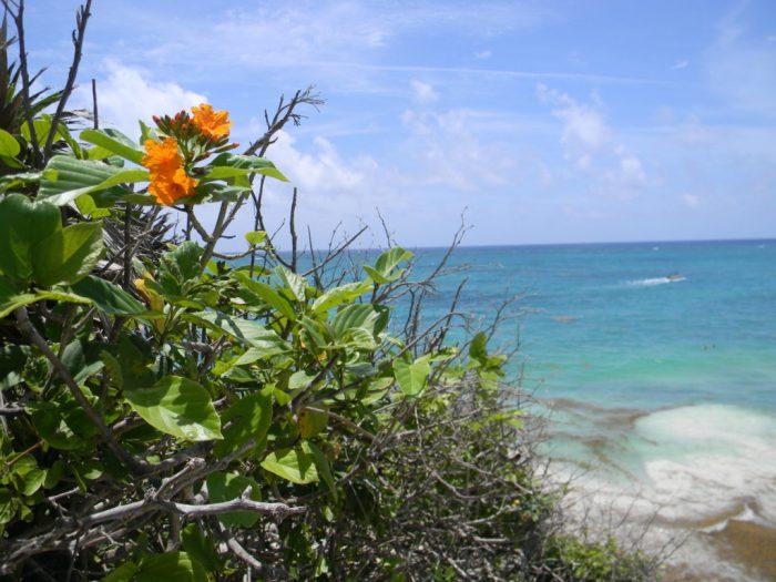 Tulum, um paraíso na Riviera Maya