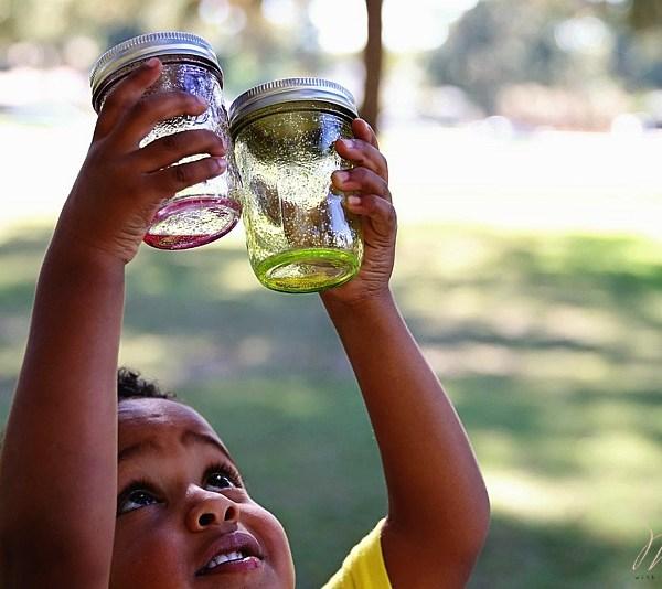 fireflies-california-parenting-dsm-9