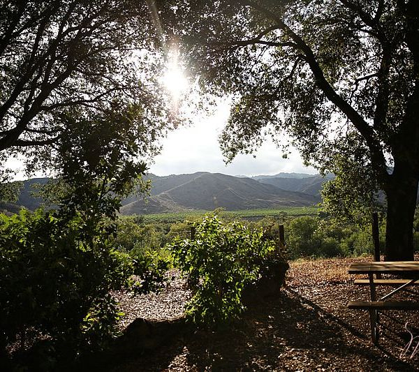 KOA Ventura Ranch: Glamping in California