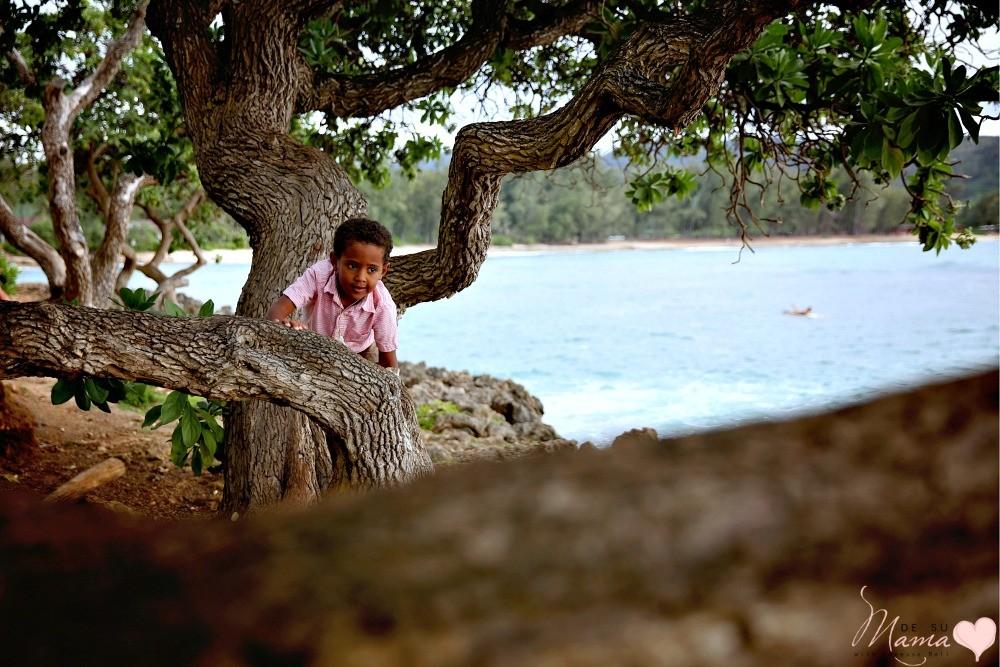 expensive-hawaiian-vacation-family-dsm-5