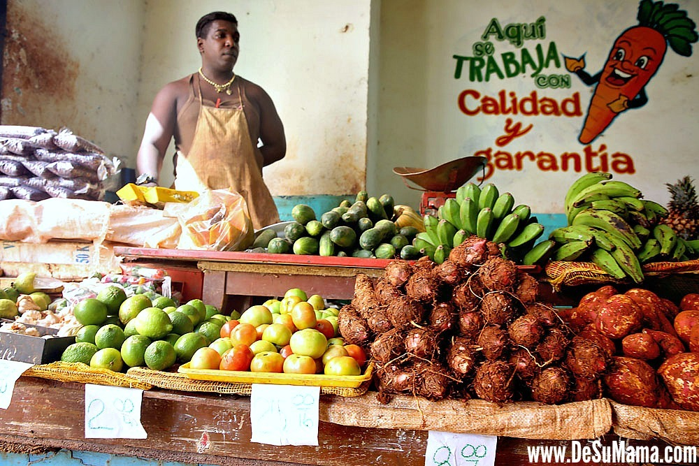 Traditional Cuban Food Culture: Grocery Store in Old Havana