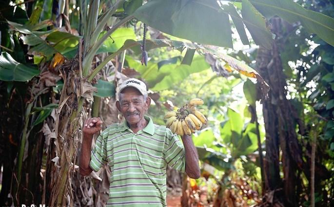 cuban-culture-travel-fruit-dsm-6