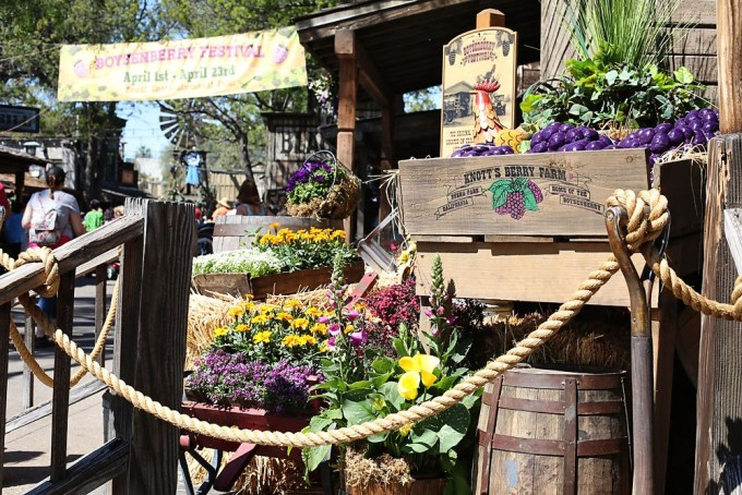 Knotts Boysenberry Festival - California Latina Blogger