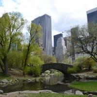 Las ardillas de Central Park están tristes los lunes, Katherine Pancol