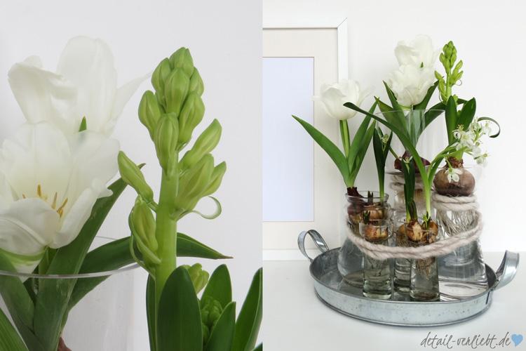 Frhblherzwiebeln in der Vase  DIY mit Blumen  detail