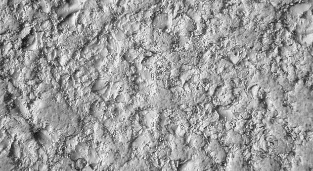 Microscopic surface