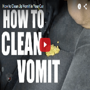 How To Clean Up Vomit In Your Car  Detail King