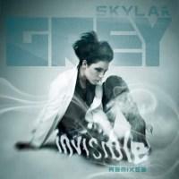 Skylar Grey Invisible Fred Falke Remix