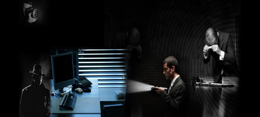die Dienstleistungen eines Detektiv oder einer Detektei