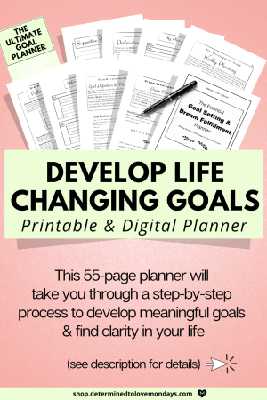 Goal planner to develop life-changing goals