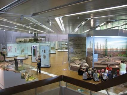 Prirodnjacki muzej Stutgart