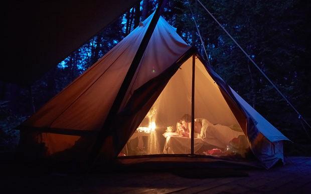 Camp my garden, carpa