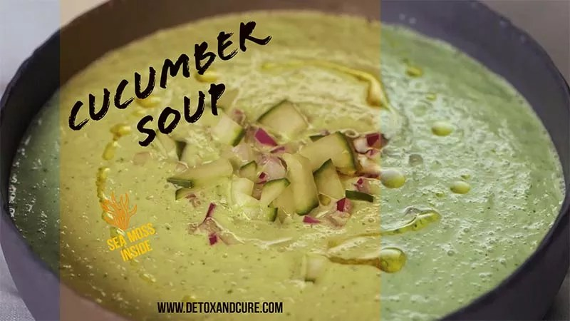 cucumber soup in a stone bowl dressed with red onion and fresh cucumber. A perfect Vegan meal