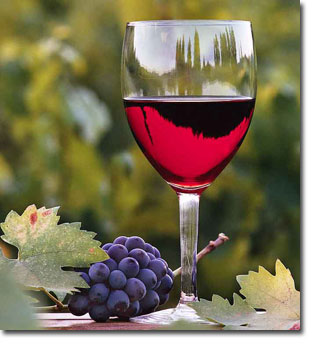 temecula-wine-tours
