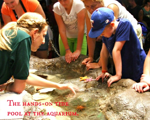 expcols touch tank