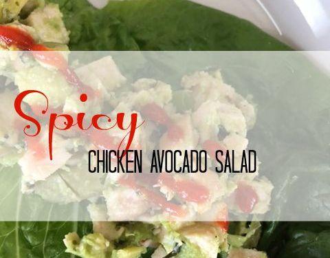 Spicy Avocado Chicken Salad Wraps