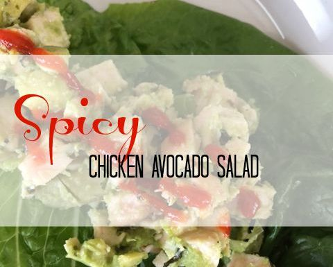 Spicy Avocado Chicken Salad Wraps