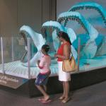 Largest Shark Ever Coming to Detroit