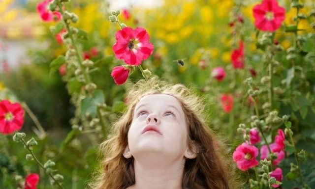 Things To Consider When Teaching Kids About Bees