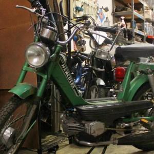 Green Sachs Hercules (SOLD)