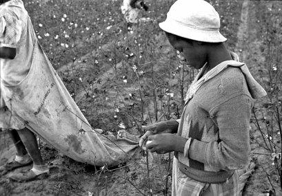 The Detroit race riot of 1943 74