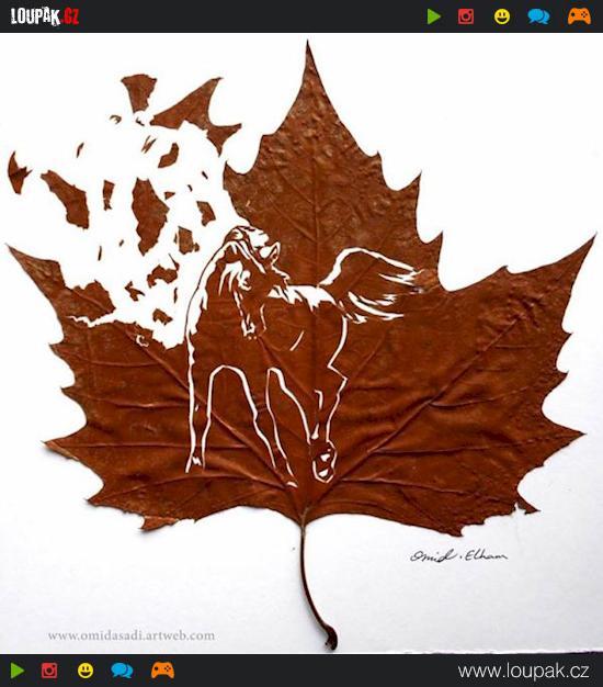 Podzim u koní – Jednodenní pobyt