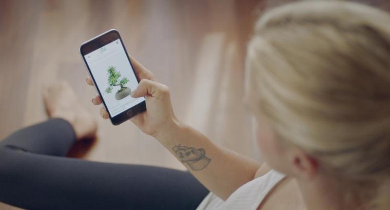 Flob e-commerce green