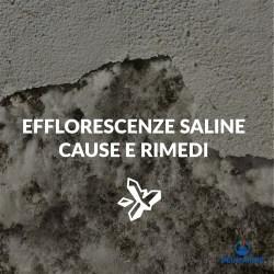 efflorescenze saline cause