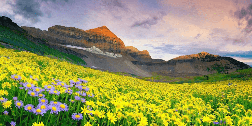 Nature of Uttarakhand