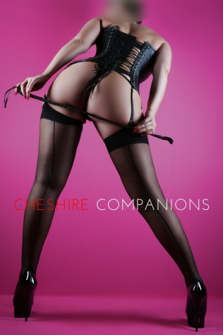 Photo of Tessa from the Cheshire Companions