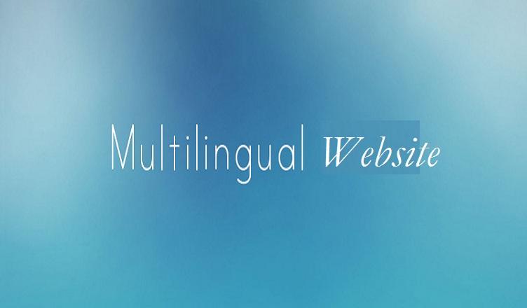 multilingual plugin for wordpress Website