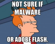 Not sure if Adobe Flash or Malware