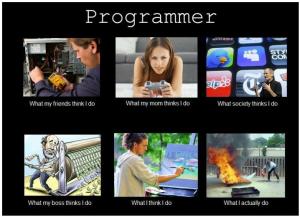 Programmer What I Do