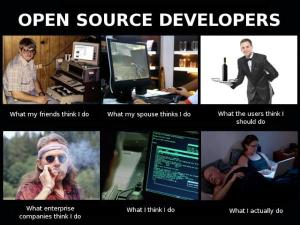 Open Source Developers What I Actually Do
