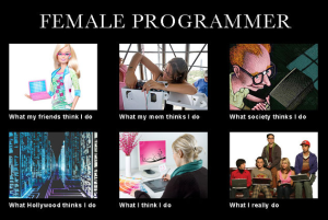 Female Developers What I Really Do  Meme
