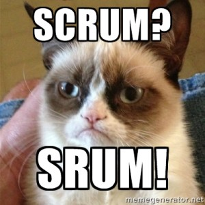 Scrum Srum Grumpy Cat Developer Meme