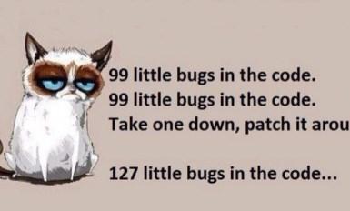 Grumpy Cat Patching Bugs Developer Meme