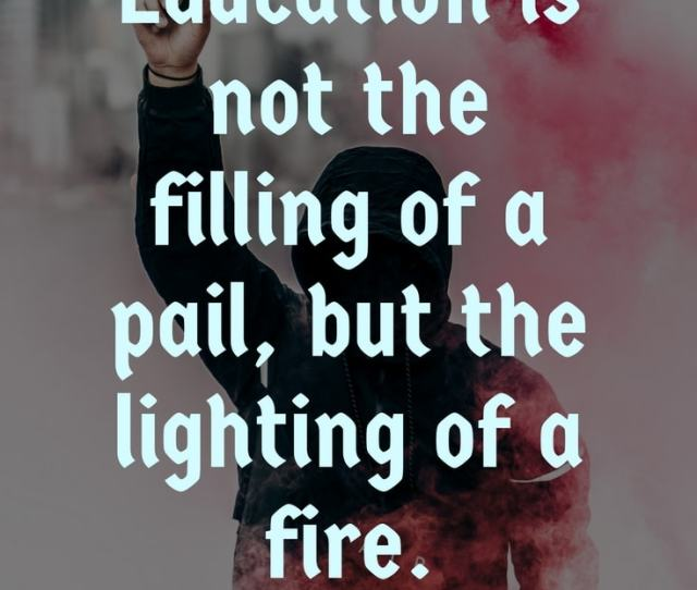 Look At This List Of Quotes On Education You Will Learn Many Quotes On Why