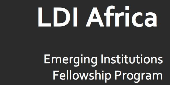 LDI Africa Emerging Institutions Fellowship Program