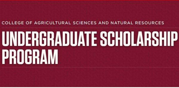University of Nebraska Lincoln CASNR Undergraduate Scholarship
