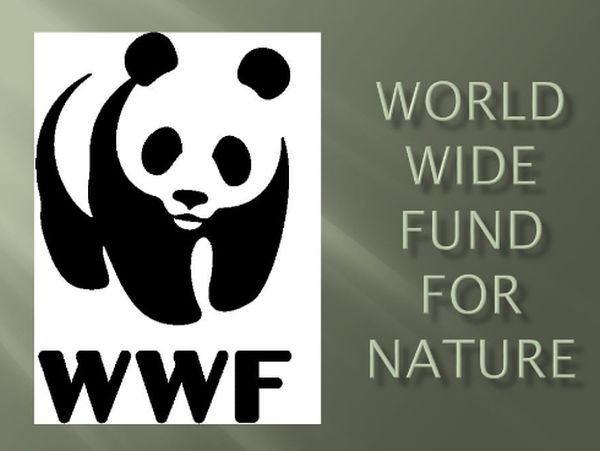 WWF Prince Bernhard Scholarships for Nature Conservation